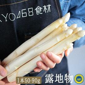 ホワイトアスパラ アスパラ  露地栽培 <フランス > 【250g(3-5本)】【冷蔵品】