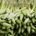 アスパラソバージュ アスペルジュ ソバージュ アスパラ <フランス産> 【150g】【冷蔵品】