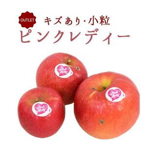 《アウトレット 訳あり品》りんご ピンクレディー キズ 小粒  <長野県産> 【1kg】