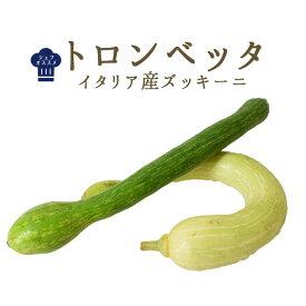 ズッキーニ トロンベッタ <イタリア産> イタリア野菜 【1本=約150-400g】【\230/100g再計算】【冷蔵品】(大きさは季節や天候によって前後する可能性がございます)