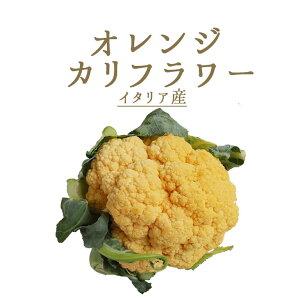 カリフラワー オレンジカリフラワー <イタリア産> 【約500-800g】【100g/¥¥280再計算】【冷蔵品】