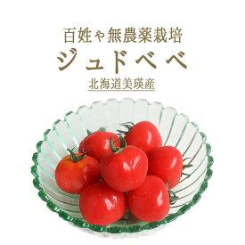 無農薬 ミニトマト ジュドベベ 百姓や 青木さんの厳選野菜 <北海道 美瑛産> 【1P=200-250g】【冷蔵品】