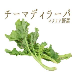 チーマ ディ ラーパ (ヨーロッパ菜の花) 【250g】<イタリア産> >【冷蔵品】