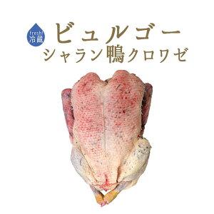 【フレッシュ 冷蔵】ビュルゴー クロワゼ鴨 (カナール クロワゼ)丸鴨(頭無・中抜)<フランス シャラン産>【約1-1.3kg】【¥¥450/100g再計算】【冷蔵品/冷凍・常温商品との同