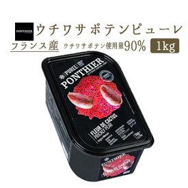 【冷凍】ウチワサボテン(プリックリーペアー) ピューレ 1kg(PONTHIER社)Prickly Pear 冷凍フルーツ フローズンフルーツ
