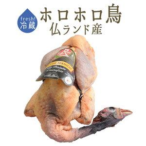 【フレッシュ 冷蔵】パンタード 頭付・中抜 【1.5-2kg】 <フランス ランド産> 【¥420/100g再計算】【冷蔵品】