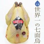 【送料無料】【フレッシュ冷蔵】世界一の七面鳥ターキーダンドーA.O.C.(頭無・中抜)<フランスブレス産>【約3-4kg】【\505/100g再計算】【冷蔵品】