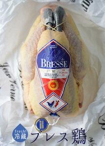 【フレッシュ 冷蔵】若鶏 プーラルド ブレス (メス 肥育鶏) <フランス ブレス産> A.O.C. 【約1.5-1.8kg】【¥700/100g再計算】(頭無・中抜)