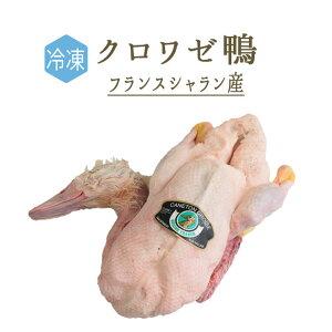【冷凍】クロワゼ鴨 (カナール クロワゼ)丸鴨(頭付・中付)<フランス シャラン産>【約1-1.5kg】【¥400/100g再計】
