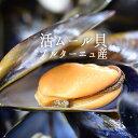 ブルターニュ産 ムール貝 (フレッシュ)活ムール貝  <フランス ブルターニュ産>【1400g】【冷蔵品】【金曜・月…