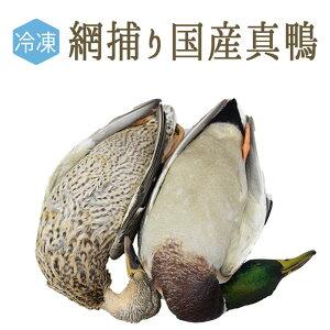 【冷凍】コルベール 真鴨 天然 毛付・頭付・中付 <茨城県 霞ケ浦産>【1羽=約1.2-3kg】
