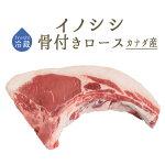 イノシシ(猪肉)骨付きロース肉ジビエ<カナダ産>【約500-700g】【\765/100g再計算】【冷蔵品】