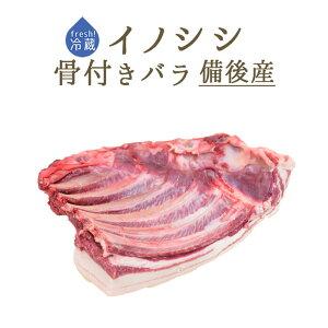 【フレッシュ 冷蔵】イノシシ (猪肉) 骨付き バラ肉 <国産 備後>【約1-2kg】【¥500/100g再計算】【冷蔵品】
