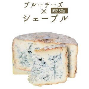 シェーブル ブルーチーズ 山羊乳のブルーチーズ ブルー・ド・シェーブル・トラディション <フランス産>【約250-320g】【¥1080/100g当たり再計算】