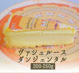 ヴァシュルース ダルジェンタル 夏のウォッシュチーズ <フランス産>【約200-250g】【冷蔵品】《季節限定》
