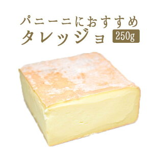タレッジョ D.O.P. ウォッシュチーズ Taleggio <イタリア産>【約250g】【冷蔵品】