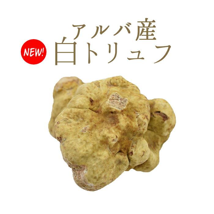 金曜日限定出荷  アルバ産 白トリュフ 【送料無料】トリュフ  truffe <イタリア アルバ産>【1P=約20g】【\1,000/1g再計算】【冷蔵品】