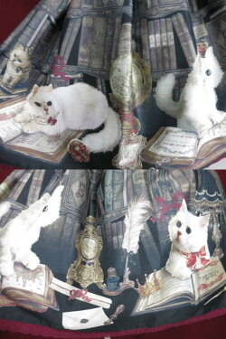 EnchantlicEnchantilly/QueenCat〜秘密の書斎〜スカートアンシャンテリックアンシャンテリーB21834_1905