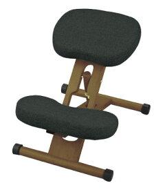 【送料無料(北海道・沖縄・離島は除く)】プロポーションチェア 6色展開 CH-88W・CH-DBR88W プロポーション 姿勢が良くなるイス 《学習椅子 姿勢 勉強 子ども 子供 チェア 椅子 イス いす チェアー 新生活 新入学 北欧》