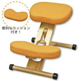 【北海道・沖縄・離島は別途追加送料かかかりますので、ご注意ください】姿勢がよくなる椅子-オレンジ- 学習チェア 学習椅子 プロポーションチェア キッズチェア 補助クッション付き オフィスチェア パソコンチェア CH-889CK 学習椅子 子供部屋 キッズチェア