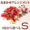 花材おまかせアレンジメント【楽ギフ_包装】【楽ギフ_メッセ入力】