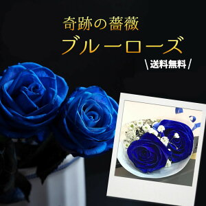 【ブラックボックス】 ブルーローズ 青バラ 青薔薇 送料無料 花束 ギフト プロポーズ 誕生日 記念日 プレゼント 贈答 バレンタイン