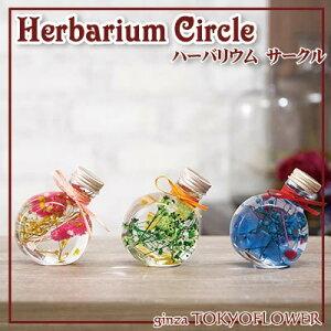 ハーバリウムギフト ハーバリウム サークル PBG 送料別 W7.2 x D4.7 x H9.3cm 植物標本 プレゼント 贈答 ハロウィン お歳暮