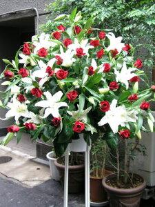 赤と白のスタンド花!(一段) 送料無料 お祝い 開店 御祝 お祝 上場祝 花 就任祝 贈答