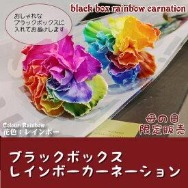 お中元 レインボーカーネーション ブラックボックス 虹色の花 送料無料 ギフト 沖縄+1000円 生花 お中元 母の日 早割