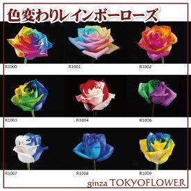 レインボーローズ オリジナル発注 虹色 花 色変わりレインボーローズ あなただけのレインボーローズを5本からご用意致します 送料別 虹色のバラ 本数を5以上にして本数指定でご注文ください