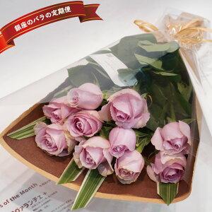 【頒布会】銀座のバラの定期便 毎月届くイケてるバラ 10本花束 1年間コース 12回 バラに見惚れる一年 生花 薔薇 ローズ 切り花 サブスク