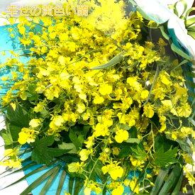 華やかな黄色い蘭 オンシジウム 花束 8本以上 M 送料無料 最短3日以内に出荷 サイズH50cm W40cm 誕生日 ブーケ プレゼント 結婚祝 生花 長寿 お祝い