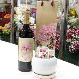 桜とワイン 2018 クアトロ・メセス サクラ・ラベル ボトル袋付き & 一才桜 旭山 さくら盆栽 セット プレゼント ギフト