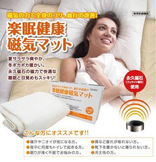 容易睡眠健康磁馬特永磁鐵氧體使用管理醫療設備磁墊雙