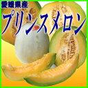 送料無料【愛媛県大洲産】プリンスメロン【8玉〜9玉】