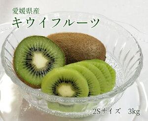 送料無料【愛媛県産】キウイフルーツ 2Sサイズ 3kg (約40個入)