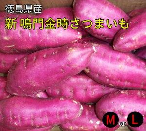 【徳島県産】【送料無料】新・鳴門金時芋5kg(さつまいも・甘藷)