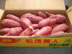 送料無料【徳島県産】鳴門金時さつま芋 2Sサイズ 5kg