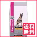 ユーカヌバ ジャーマンシェパード 成犬用 13.61kg【送料無料】