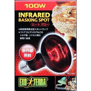 ジェックス ヒートグロー赤外線照射スポットランプ 爬虫類用 100W【送料無料】