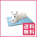 ユーザー わんだくーる 犬用 M【送料無料】