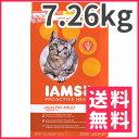アイムス オリジナル チキン 成猫用 7.26kg【送料無料】