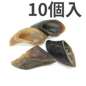 レッドバーン 牛のヒヅメ ナチュラル 10個入【送料無料】
