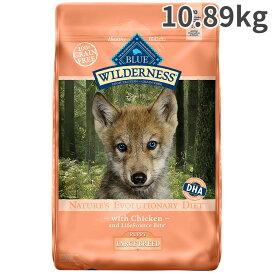 ブルー ウィルダネス ラージパピー 大型犬子犬用 10.89kg【送料無料】