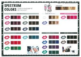 【人気】【ペールライン・ペールピンク】パイモア スペクトラムカラーズ 400g(全19色)カラートリートメント サロン専売品ハイトーンカラーの褪色部分を、外国人風ニュアンスカラーにシアバター、ナノリピジュア配合しなやかで艶のある髪に
