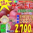 【CA貯蔵】【送料無料】糖度13度以上!長野県産サンふじ5kg小玉20玉SALE!シャキシャキで甘くて美味しいよ♪!