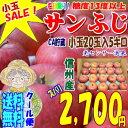 【クール便】【送料無料】【CA貯蔵】糖度13度以上!長野県産サンふじ5kg小玉20玉SALE!シャキシャキで甘くて美味しいよ♪!