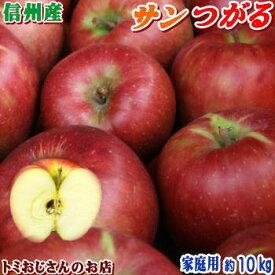 【送料無料】長野県産 サンつがる Cランク(家庭用)約10kg(32-36玉)訳あり(キズ、色ムラなど)秋のりんごシーズン最初の品種!信州りんごは甘〜いよ♪