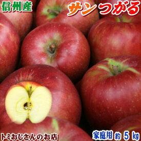 【送料無料】長野県産 サンつがる Cランク(家庭用)約5kg(16-18玉)訳あり(キズ、色ムラなど)秋のりんごシーズン最初の品種!信州りんごは甘〜いよ♪