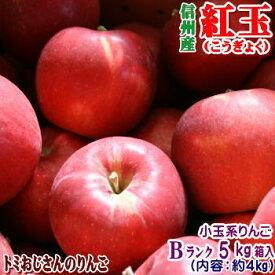 【送料無料】長野県産 紅玉(こうぎょく) Bランク(マル特)5kg箱入(内容約4kg)(18-25玉)アップルパイにはこのりんご!お菓子作りの定番品種!★【ラッキーシール対応】